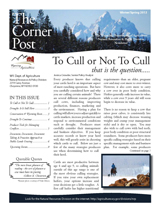 2013 Cornerpost Newsletter