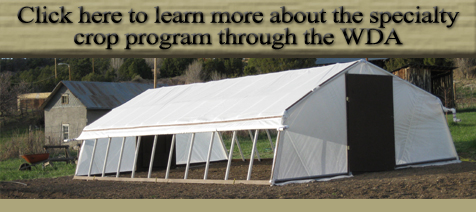 Click here to learn more about the specialty crop program through the WDA